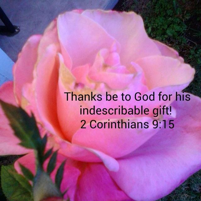 Good Morning Jesus Days Journey